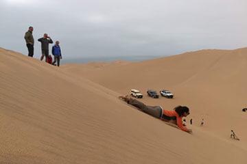 Living Desert Tour