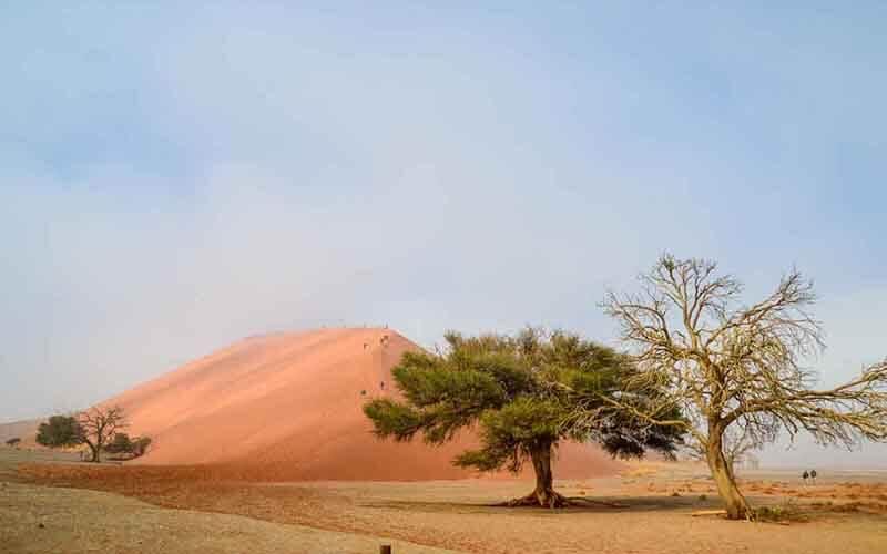 Sossuvlei Safari Tours